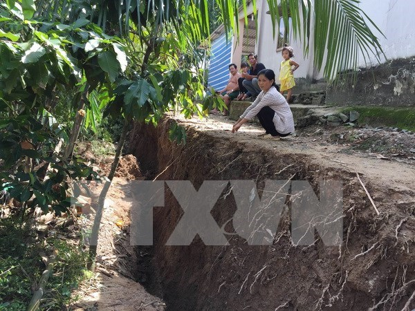 Deputy PM urges Mekong Delta to set forth scenarios for landslide response hinh anh 1