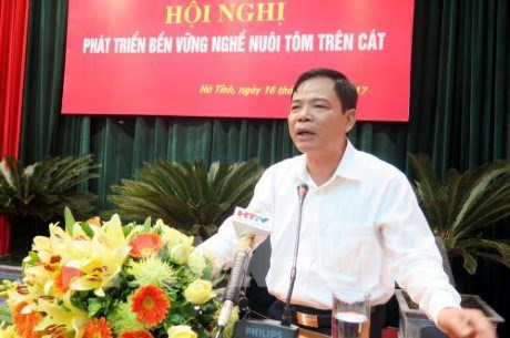 Central coastal provinces eye sustainable shrimp farming hinh anh 1