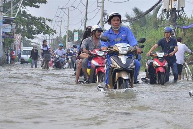 HCM City to install sensor chips at flooding hotspots hinh anh 1