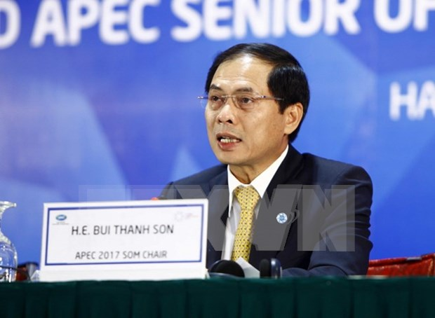 APEC 2017 SOM 2 concludes with fruitful outcomes hinh anh 1
