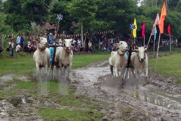 An Giang Tourism Month kicks off hinh anh 1