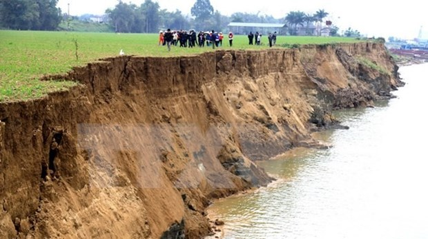 Illegal sand mining in Phu Tho continues despite ban hinh anh 1