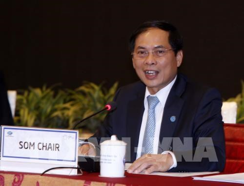 APEC SOM Chairman urges joint efforts to shape APEC's future hinh anh 1