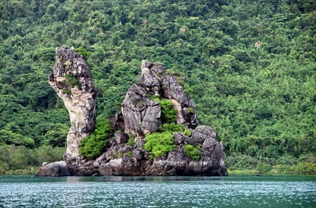 Bai Tu Long National Park becomes ASEAN's 38th heritage park hinh anh 1