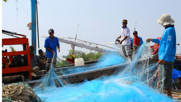 Kien Giang branches out marine economy hinh anh 1