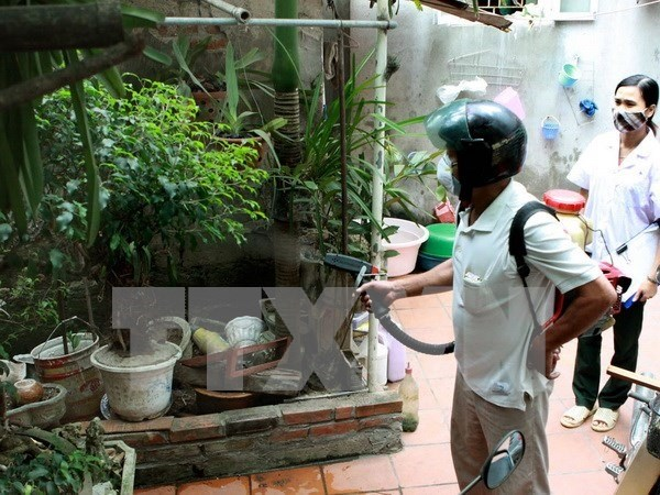 Hanoi reports first death from dengue fever hinh anh 1