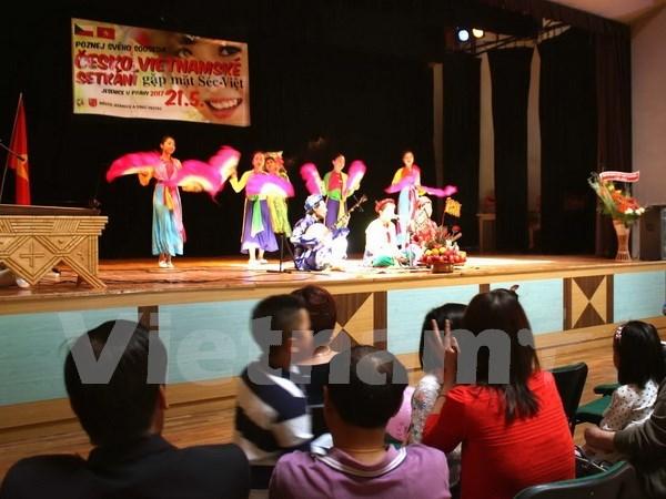 Festival honours Vietnamese, Czech cultures hinh anh 1