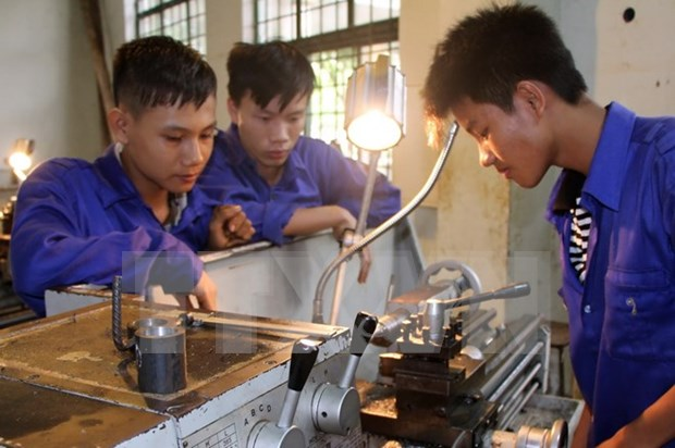 Vocational schools face shortage of secondary school graduates hinh anh 1