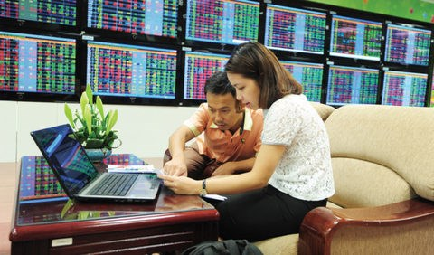 Shares slow down as banks lose steam hinh anh 1