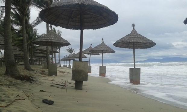EU, France support Vietnam to tackle coastal erosion hinh anh 1