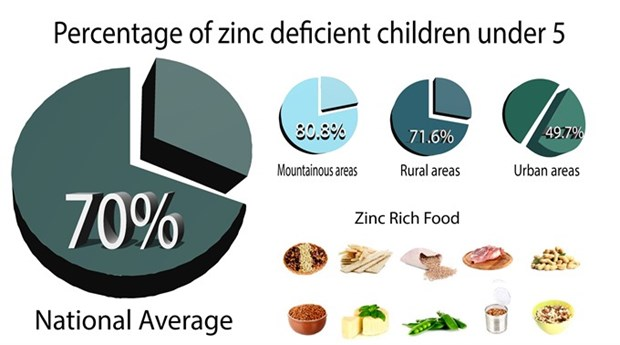 Zinc deficiency rampant in Vietnamese women, children hinh anh 1