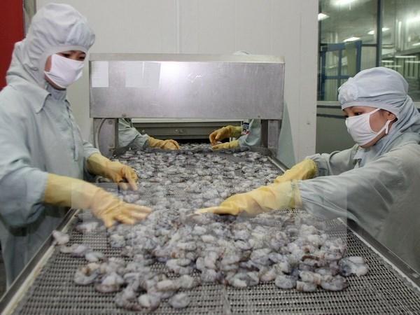 Bac Lieu sets up hi-tech shrimp farming area hinh anh 1