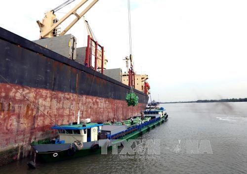 Agro-forestry-aquatic product exports hit 13.7 billion USD hinh anh 1