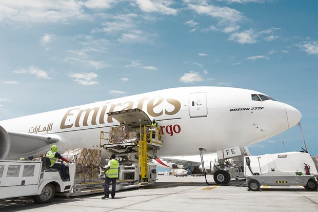 Emirates boosts exports from Vietnam to UAE hinh anh 1