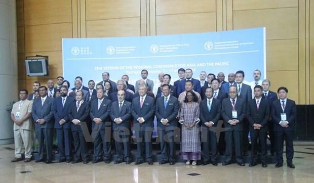 Vietnam, UN set development cooperation model hinh anh 1