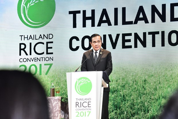 Thailand promoted as world's rice trade centre hinh anh 1