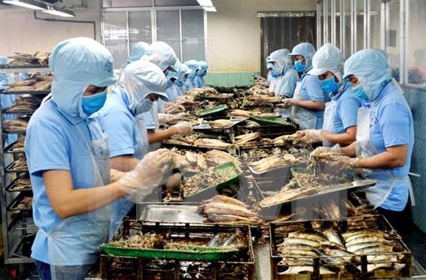 Vietnam's aquatic product exports hit 2.8 billion USD hinh anh 1