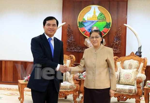 Vietnam steps up Lao National Assembly building project hinh anh 1