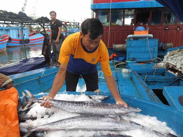 Gov't to prevent fishing in foreign waters hinh anh 1