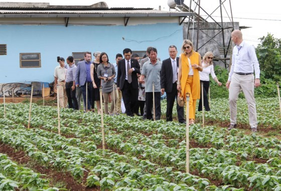 Dutch Queen visits farmers, businesses in Lam Dong hinh anh 1