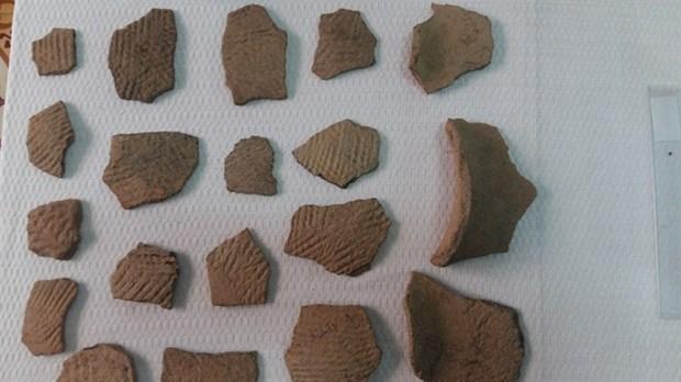 Pre-Sa Huynh Culture items found in Da Nang hinh anh 1