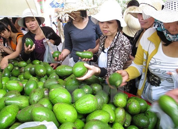 Southern fruit festival opens hinh anh 1