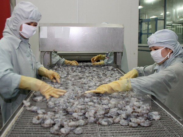 Australia eases shrimp import suspension hinh anh 1