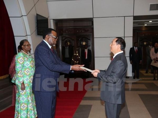 Vietnam treasures ties with Namibia: Ambassador hinh anh 1
