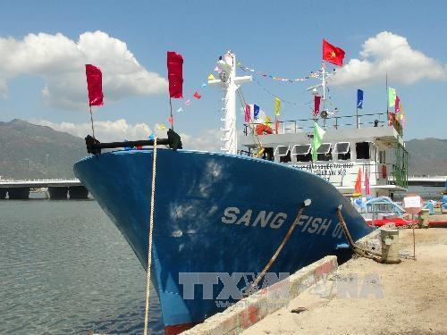 Steel-coated ships support Binh Dinh fishermen hinh anh 1