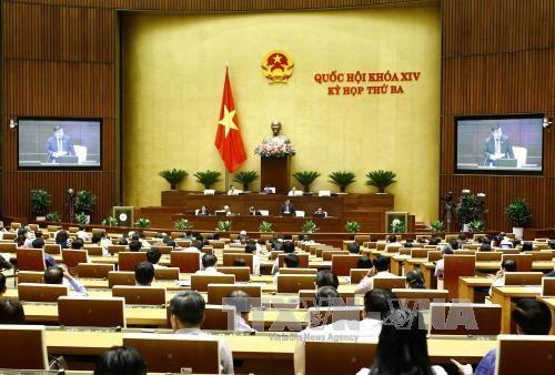 Legislators mull over Law on Irrigation on June 8 hinh anh 1
