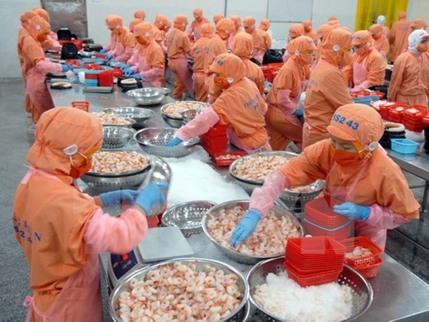 Vietnam becomes largest shrimp provider in RoK hinh anh 1