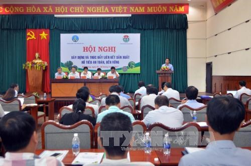 Ministry to issue codes for for-export pepper growing areas hinh anh 1