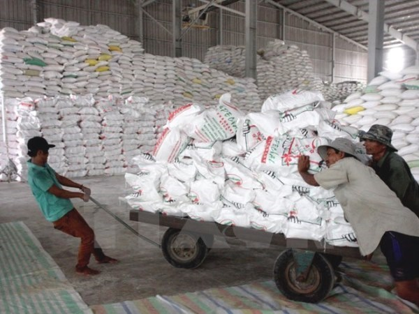 VN's rice export price hits 3-year high hinh anh 1