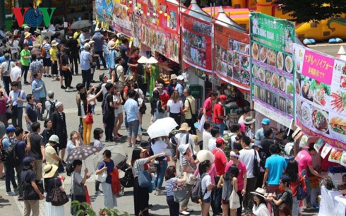 Vietnam Festival 2017 opens in Japan hinh anh 1