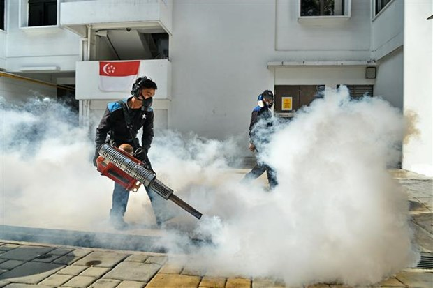 Singapore confirms two more Zika cases hinh anh 1