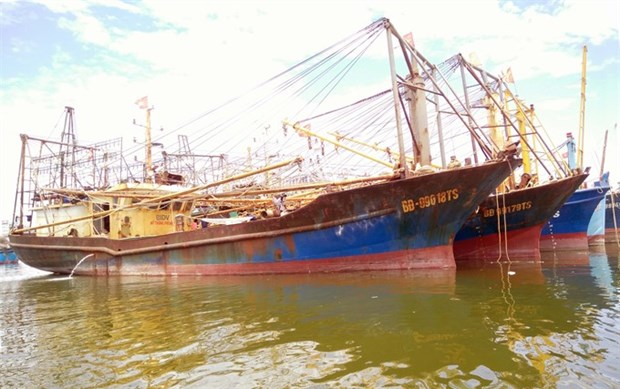 Ministry orders inspection of substandard steel fishing boats hinh anh 1