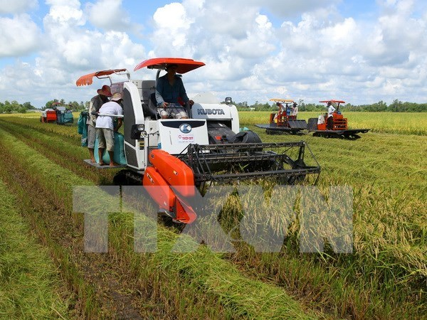Almost one third of communes recognised as new-style rural areas hinh anh 1