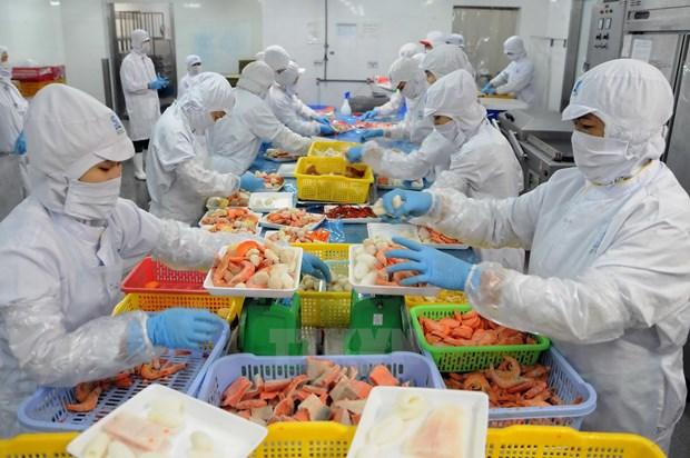 Australia – potential market for Vietnam goods hinh anh 1