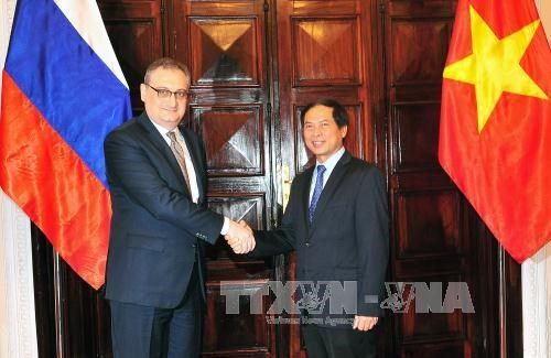 Vietnam, Russia hold strategic dialogue, political consultation hinh anh 1