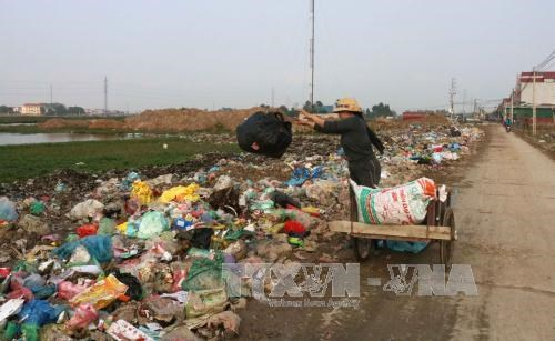 HCM City to install environmental violation cameras hinh anh 1
