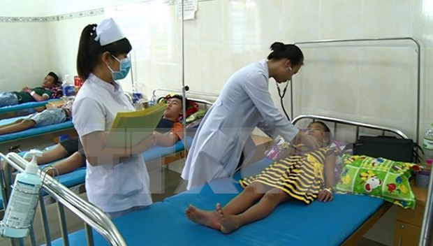 Health ministry urges proactive prevention of dengue fever hinh anh 1
