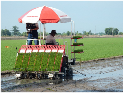 WB-funded agriculture project emphasizes real-life effectiveness hinh anh 1