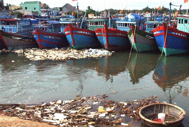 Pollution concerns in Quang Ngai province hinh anh 1