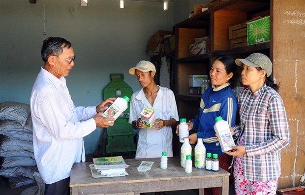 Market told to limit pesticide import hinh anh 1