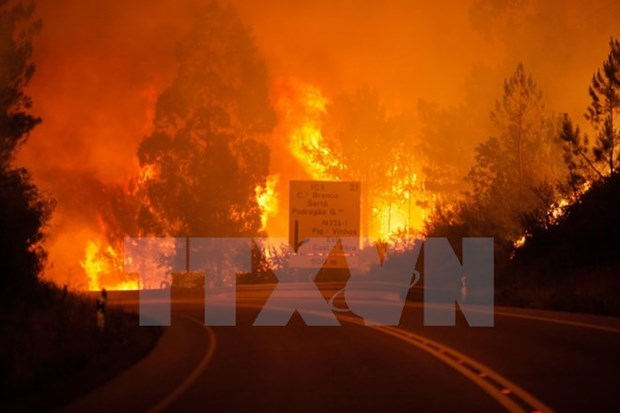 Condolences sent to Portugal over forest fires hinh anh 1