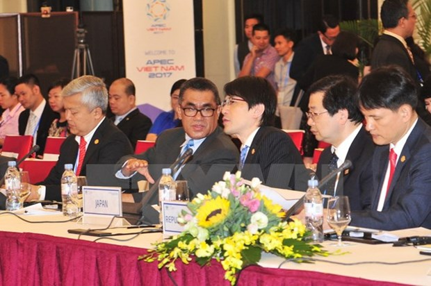 APEC 2017 offers opportunities for Vietnam to promote tourism hinh anh 1