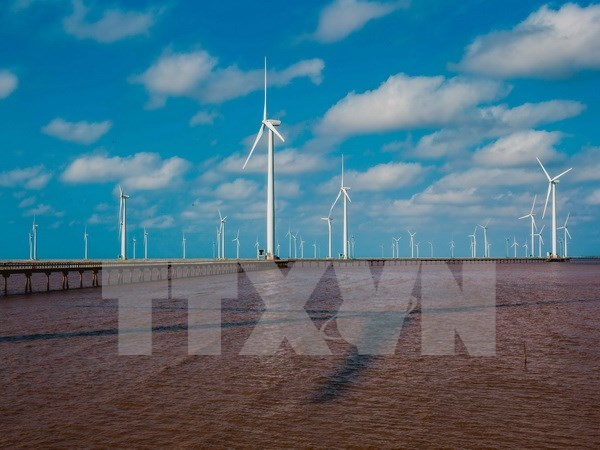 Bac Lieu attractive to foreign wind power firms hinh anh 1