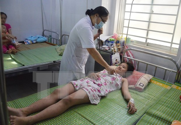 Hospitals urged to improve dengue fever treatment hinh anh 1