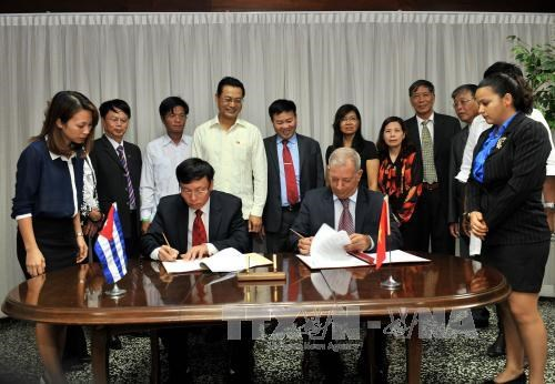 Vietnam presents 5,000 tonnes of rice to Cuba hinh anh 1