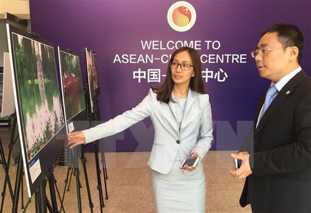 ASEAN, China seek to increase tourist arrivals hinh anh 1